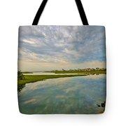 Swan River Morning Tote Bag