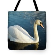 Swan Strutting Tote Bag