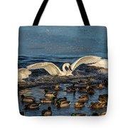 Swan Wings Reach Tote Bag