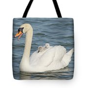 Mute Swan With Babies On Its Back Tote Bag