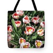 Swanhurst Tulips Tote Bag