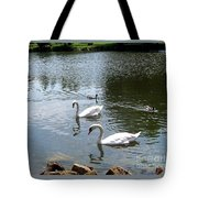 Swans And Ducks Tote Bag