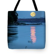 Swans And The Moonrise In Stockholm Tote Bag