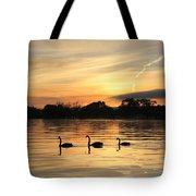 Swans At Dawn Tote Bag