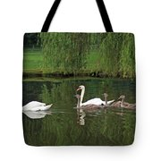 Swans At Two Months Tote Bag