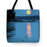 Swans Gliding Into The Moonlight During A Moonrise In Stockholm Tote Bag