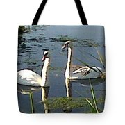 Swans In The Sunshine Tote Bag