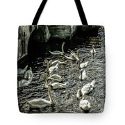 Swans On The Canal Tote Bag