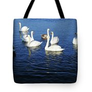 Swans Sligo Ireland Tote Bag