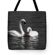 Swans Swimming Isolation Tote Bag