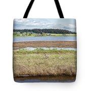 Swantown Lake Estuary Tote Bag