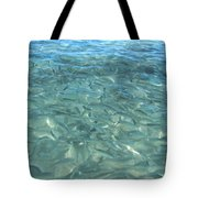 Swarming Fish Tote Bag