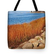 Swath Of Gold In Centerport, New York Tote Bag