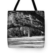 Swaying Oak  Tote Bag