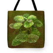 Swedish Ivy Tote Bag