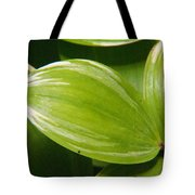 Sweeping Green Tote Bag