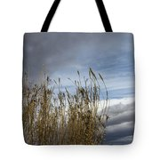 Sweeping The Clouds Away Tote Bag