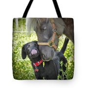 Sweet Affection Tote Bag