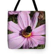 Sweet Bee On Pink Cosmos - Digital Art Tote Bag