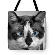 Sweet Blue Eyes Tote Bag