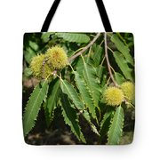 Sweet Chestnuts Tote Bag