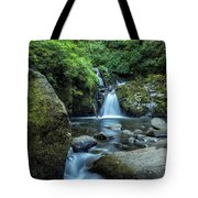 Sweet Creek Falls Vertical Tote Bag
