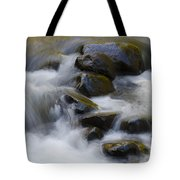 Sweet Creek Oregon 14 Tote Bag