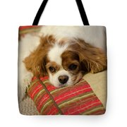Sweet Dog Face Tote Bag