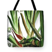 Sweet Flag Or Calamus, Acorus Calamus Tote Bag