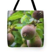 Sweet Fruit Tote Bag