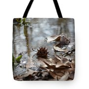Sweet Gum Seed Pod In Mississippi Winter Tote Bag