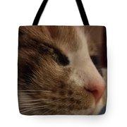 Sweet Kitten Tote Bag