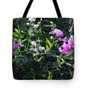 Sweet Pea In Tahoe Tote Bag