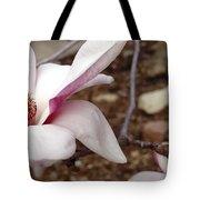 Sweet Pink Magnolia Tote Bag