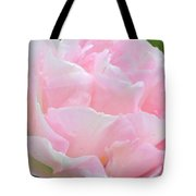 Sweet Pink Tulip Tote Bag