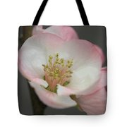 Sweet Refinement Tote Bag