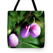Sweet Ripe Blue Plum On A Branch Tote Bag