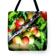 Sweet Ripe  Plum On A Branch Tote Bag
