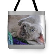 Sweet Sabrina Tote Bag