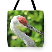 Sweet Sandhill Profile Tote Bag