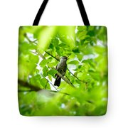 Sweet Song Mother Bird Tote Bag