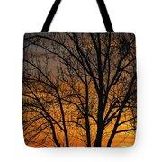Sweet Sunset Tote Bag