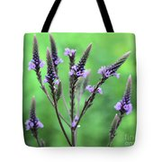 Sweet Vervain Tote Bag