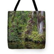 Sweet Water Strand - 12 Tote Bag