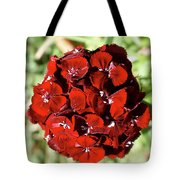 Sweet William Macro Tote Bag