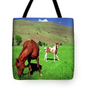 Sweetest Gift Tote Bag