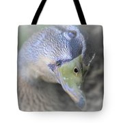 Sweetest Mallard Expression Tote Bag