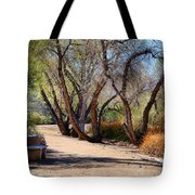 Sweetwater 6 Tote Bag