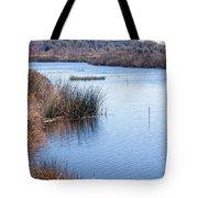Sweetwater Wetland Pond Tote Bag