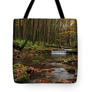 Swift Run Tote Bag